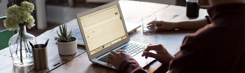 Curs engleza business online Skype